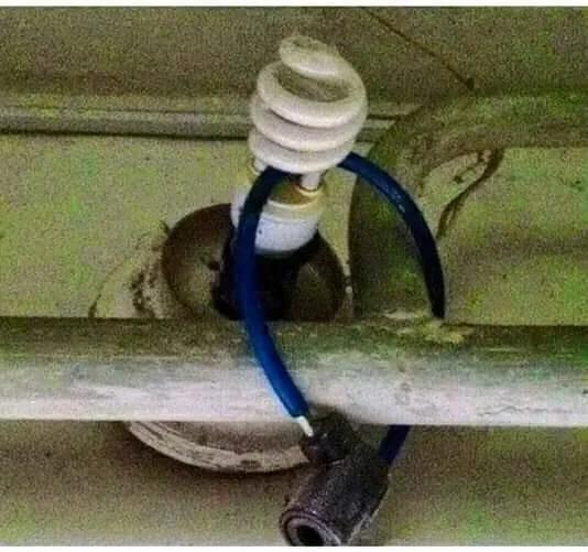 bulb 2.png