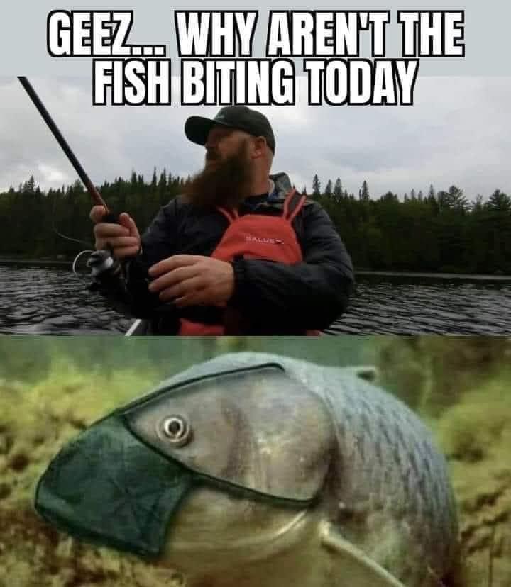fish biting.jpg