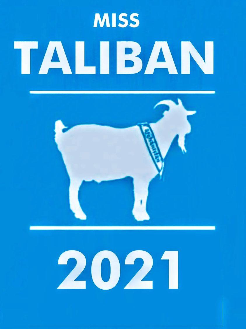 Miss Taliban.jpg