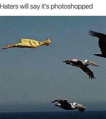 photoshopped.jpg