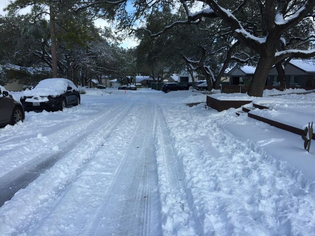 snow feb 2021 5.jpg
