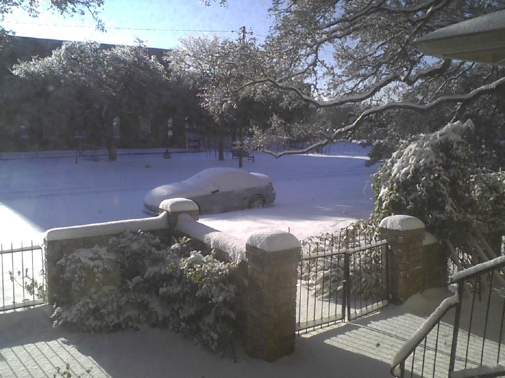 snow feb 2021 7.jpg