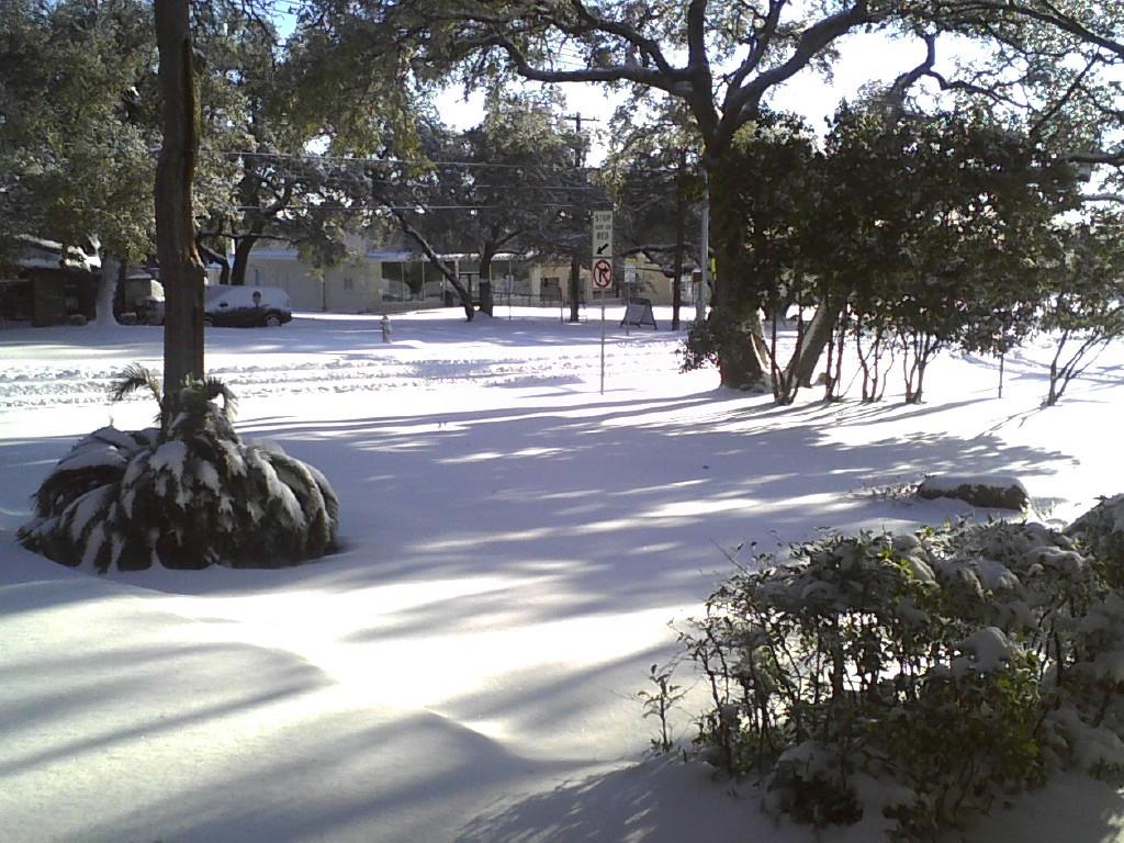 snow feb 2021 8.jpg